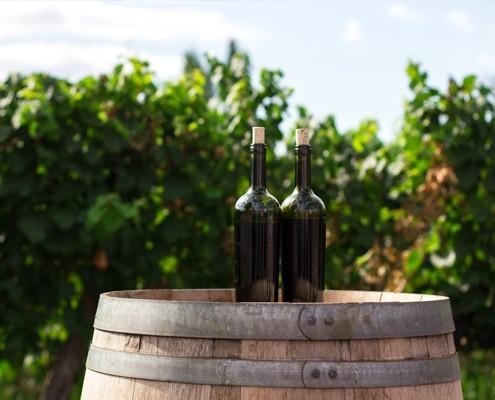 Nakar May Musts Wine tasting Mallorca