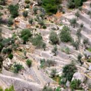 F Nakar Hotel Blog Excursions Mallorca