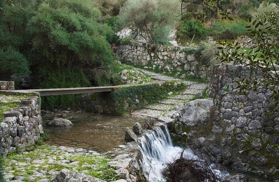Nakar Hotel Blog Palma Excursion