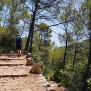 F Nakar Hotel Pocket Guide Esporles village Mallorca